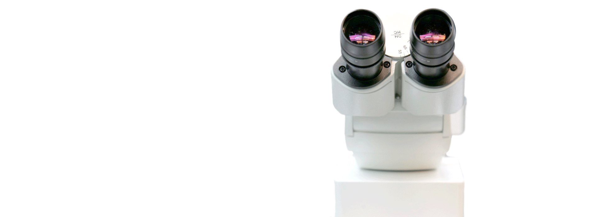 microscope_slider